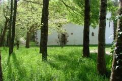 Sta. Krutz ermita (5)