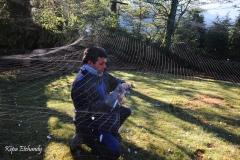 Palomeras - Arreglando las redes